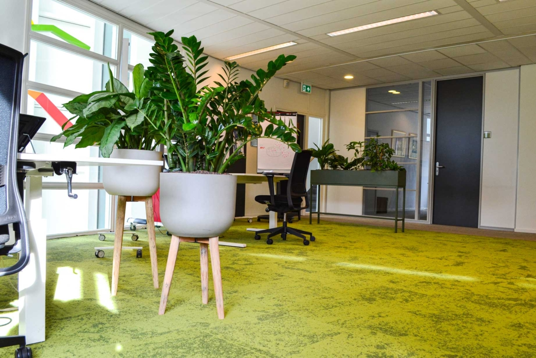 Retro-plantenbakken-tb-1100x734.jpg