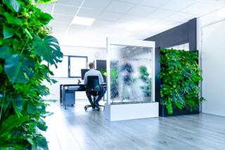 Waterwand en planten roomdivider