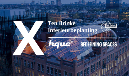 Ten Brinke interieurbeplanting x hque