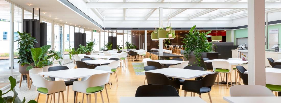 Urban-jugle-bedrijfsrestaurant-1100x406.jpg