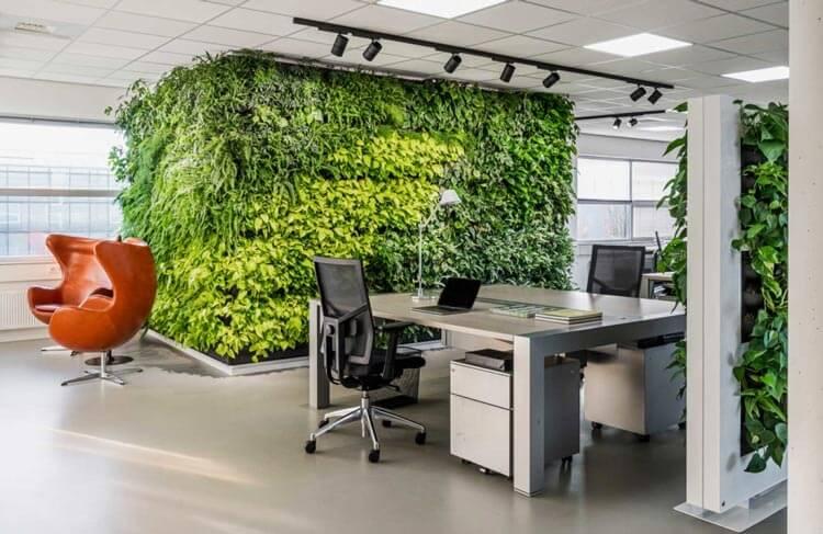 Voordelen van een plantenwand voor op kantoren