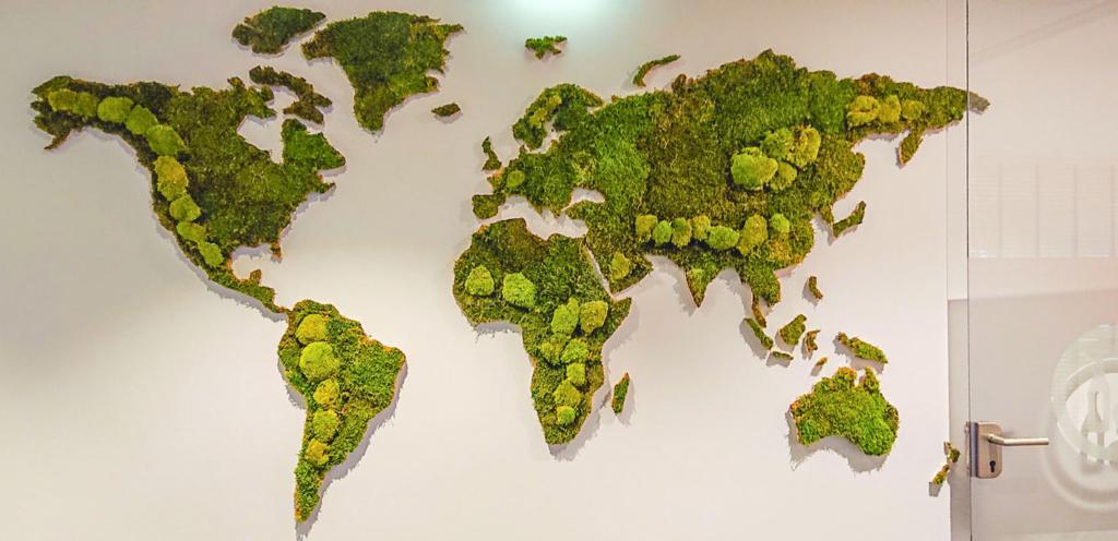 Mix van plat en bolmos op een wereldkaart