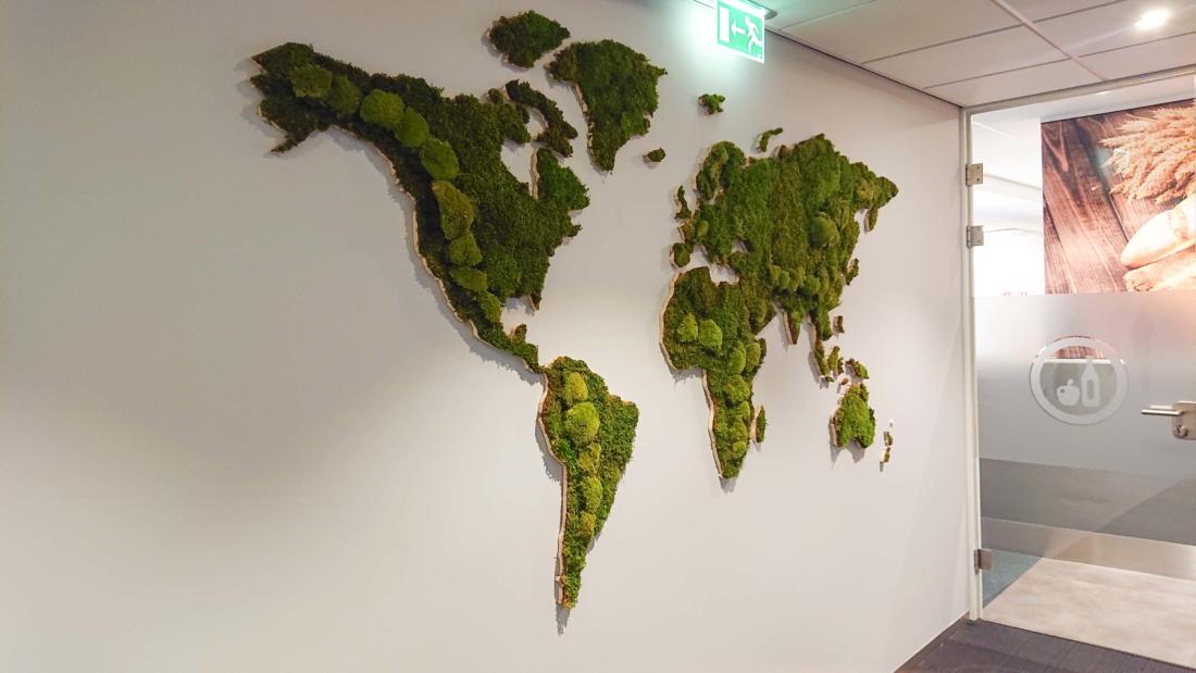Wereldkaart-van-mos-kantoor-web-1100x619.jpg