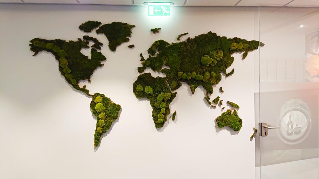 Wereldkaart-van-platmos-en-bolmos-op-kantoor-web-1100x619.jpg