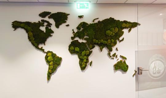 Wereldkaart van platmos en bolmos