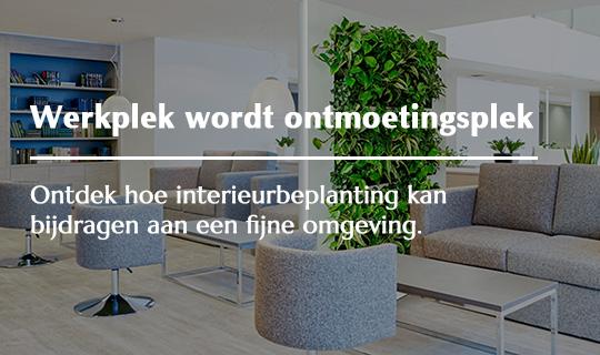 Kantoor - van werkplek naar ontmoetingsplek